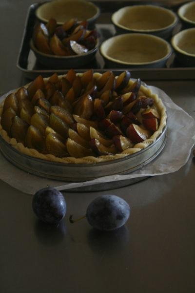 tarte aux pruneaux フレッシュプルーンのタルト